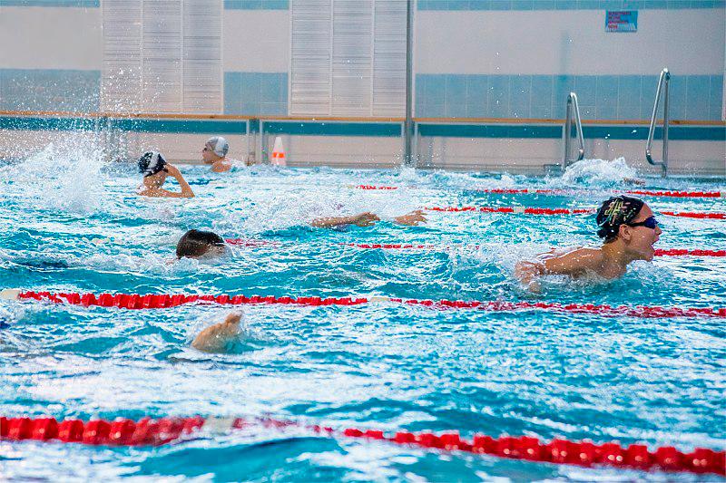Фестиваль ВФСК ГТО по плаванию