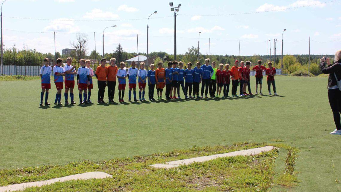 Турнир по мини-футболу среди детских команд, посвященный Всероссийскому Дню Физкультурника