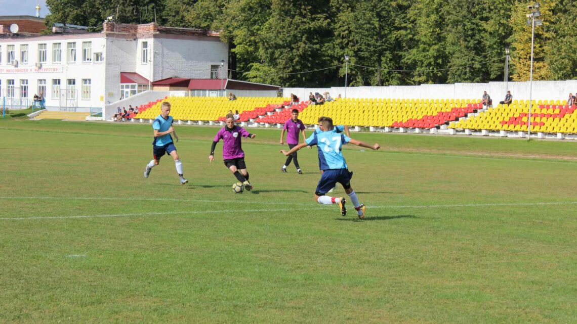Первенство московской области по футболу среди юношеских команд